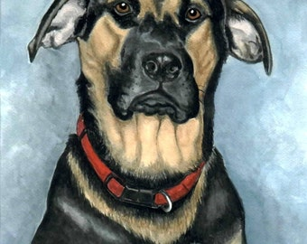 ACEO PRINT serious American Bull Dog LUCY
