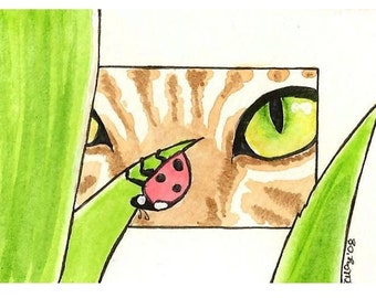ACEO the cat and the ladybug LOVELY EYE original