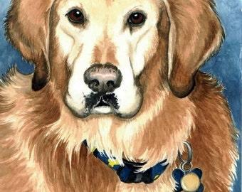 ACEO golden retreiver A DOG NAMED BUSTER good doggie