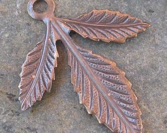 6 Antique Brass Leaf Charms Jewelry Findings 1147