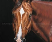 Z - Signed Giclee Print of original pastel Horse Portrait