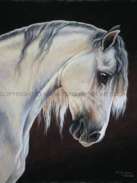 White gray Andalusian Horse print of original pastel painting