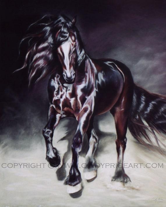 Friesian Horse Head Friesian Stallion Black Horse