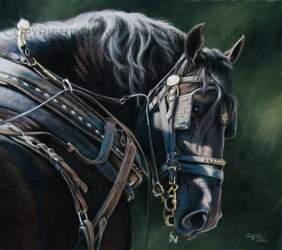 Draft Horse In Harness Print Of Original Pastel By