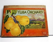 Vintage Fruit Crate Sign-Yuba Orchard