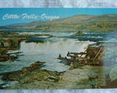 Vintage Postcard Celilo Falls Oregon showing Native American Traditional Fishing