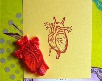 anatomical heart hand carved rubber stamp
