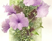 Purple Lavendar Petunias watercolor painting