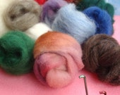 Rainbow Needle Felting Kit with multi Roving Wool Sampler- free pattern and 101 instruction