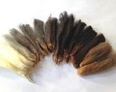 Cormo Fleece Sampler Natural Color Spectrum of Coated Superfine Wool Locks