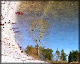 November Reflection