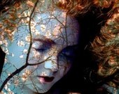 Autumn Decor, Fine Art Print,  Ophelia