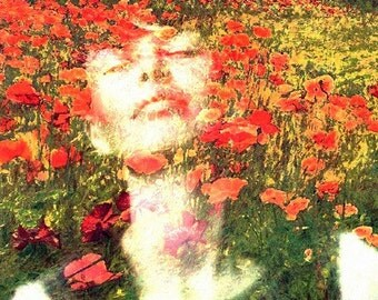 Poppy  Field.......8 x 8 archival photo collage giclee print