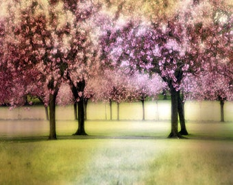 Fine Art Print, Giclee Archival Print, Photomontage, Collage, Painted Photographs, Cherry Trees in the Park