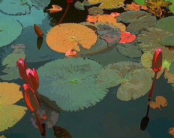 Water Lilies for Gauguin