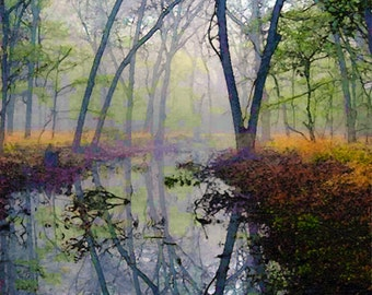RESERVED FOR ANNETTE, Autumn, Forest, Water, Pond, Trees, Landscape, Nature Photograph, Fine Art Painted Photograph, Giclee Print
