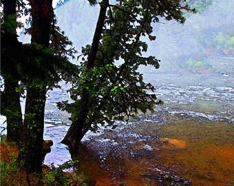 Autumn Landscape, Fall Landscape, Forest, Water, River, Trees, Landscape, Nature Photograph, Fine Art Painted Photograph, Giclee Print