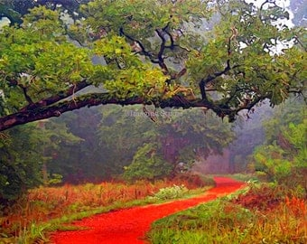 Painted Photograph, 7x5 fine art giclee print, Title: Follow the red brick road