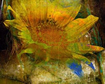Photograph, Photomontage, Collage, Home Decor, Wall Art,  Giclee, Fine Art Print, Flowers, SunFlowers,