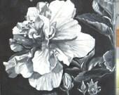 Hibiscus Small black-white-2
