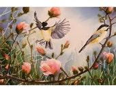 Bird Art Black-cap Chickadee Watercolor Print Spring Summer Flight Fly Men Women Magnolia Morning Light 6 x 9 Priced Under 25