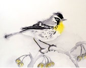 "Bird Art Original Watercolor Painting Spring Summer Men Women Kids Yellow Throated Warbler white Woodland 7.75"" x 7.75"" Priced Under 60"