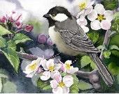 Blackcap Chickadee PRINT / Watercolor painting / Bird wildlife art / Natural history Nature woodlands / Artwork color field green Wall decor