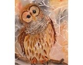Owl Art Watercolor Nature Brown Original Summer Fall Woodlands Forest Animal Women Kids Pale Gray Cinnamon 7.6 x 9.6 Priced Under 70
