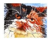 Cat Art Watercolor Painting Print Persian Kitty Men Women Teen Girls Kids Mischievous Kitten Fluffy Soft Mad Summer Fall 7 x 5 Under 20