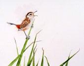 Bird Art Original Watercolor Painting Small Marsh Wren: Men Women Kids Teens Feathers Freedom SingPrice 7 x 9 Under 60