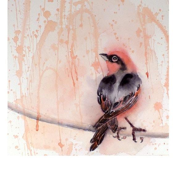 SALE 10% - Bird Art Original Watercolor Painting Men Women Kids Teens Finch Sunshine and Rain Nature Gift Under 75 USD