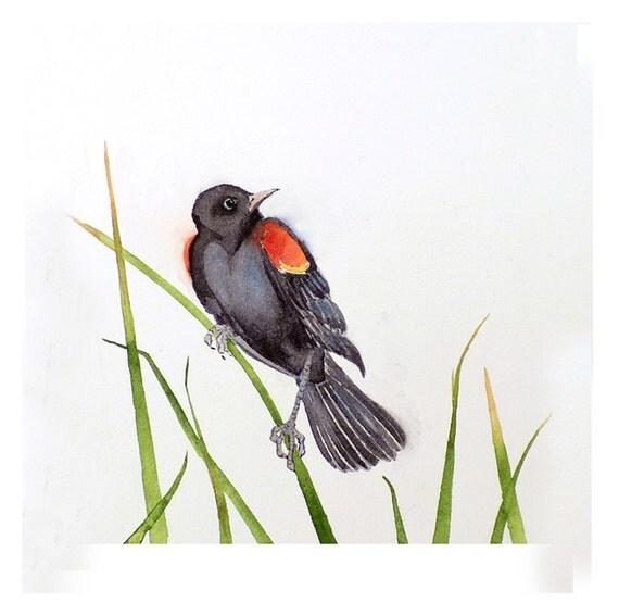 Original Watercolor Painting Bird Art Black Red Male: Autumn Apartment Dorm Men Women Children Feathers Nursery Freedom 7 x 9 Under 55