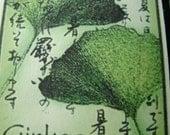 nature lover's ginkgo leaf card