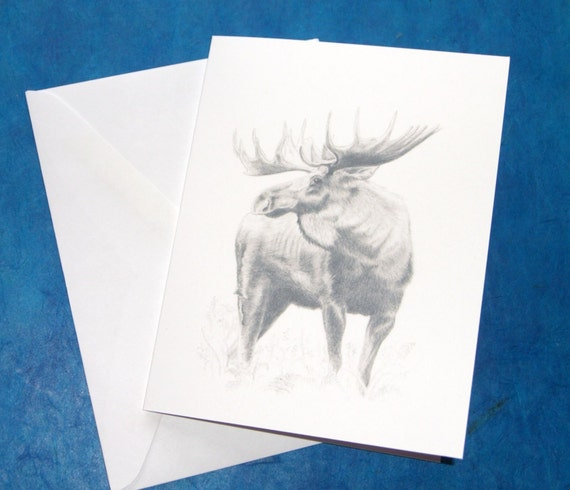Moose Note Cards  set of 5