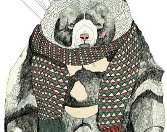 Woolly Bear 5 x 7 Print