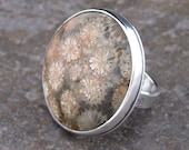 Coral Fossil and Sterling Silver Ring