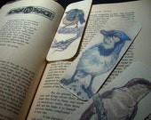 Bluejay, Kinglet, Cuckoo: Bookmark Bundle