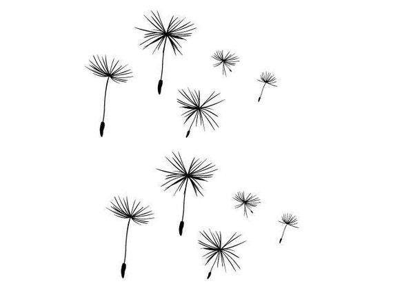 Ten Dandelion Seeds Wall Decal • Medium size dandelion seeds • Flower wall decal