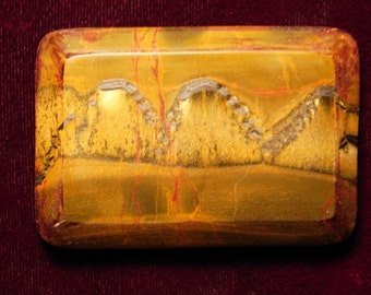 Tiger-eye Jasper Buckle