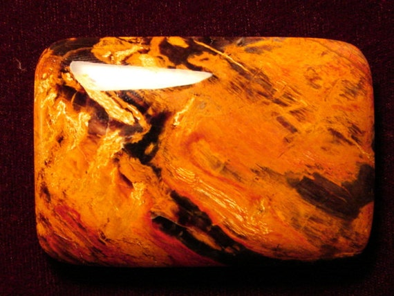 Petrified Wood Belt Buckle