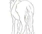 schüchtern Pferd 8 X 10 Kunst Druck, Geste Strichzeichnung