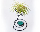 Wire Air Plant Holder- Fun Quirky 3