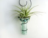 Air plant holder -Recycled bottle sconce -Pale Green with Aqua Shell Beads