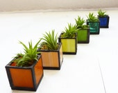 Air plant holder - Six stained glass cubes - Rainbow