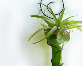 Air plant holder -Recycled bottle sconce - Green with Copper Zig Zag