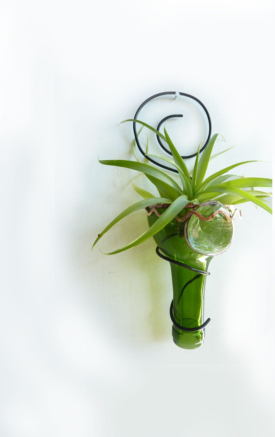Air Plant Holder Recycled Bottle Sconce Green With Copper