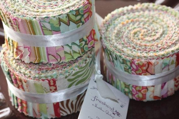 Freshcut 2.5 inch Design Roll strips fabric Heather Bailey