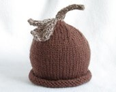 baby boy or girl knit hat with stem and leaves embellishment.  sizes newborn to big kid available.