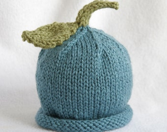 Baby boy or girl hand knit hat with leaf and stem embellishment.  Sizes newborn to big kid available. YOU CHOOSE COLOUR