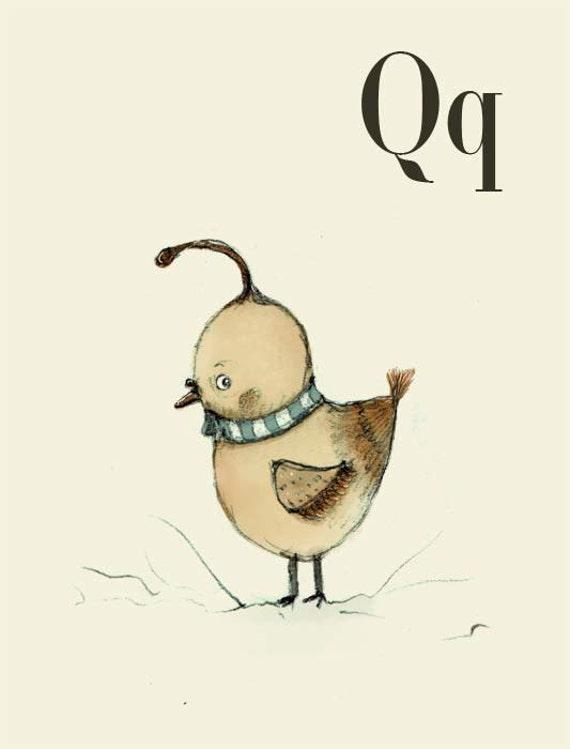 Q for Quail - 6x8 - Alphabet art - Alphabet Letters - Baby Zoo Animals - Safari Nursery - Nursery art - Nursery decor - Baby Animals